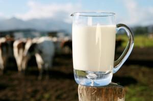 A tej élet, erő, egészség