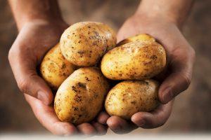 krumpli-poteto